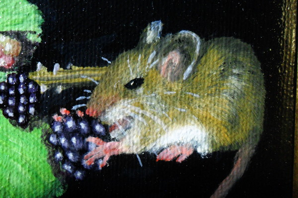 The mouse eating a blackberry - instead of an ermine crawling up her sleeve. Copyright (c)2015 Paul Alan Grosse