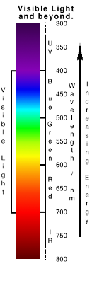 The visible spectrum, showing the bands of light eityher side that we are unable to see with out own eyes. Copyright (c)2020 Paul Alan Grosse