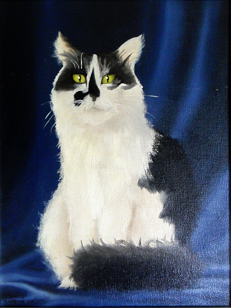 Starey cat. Copyright (c)1988 Paul Alan Grosse